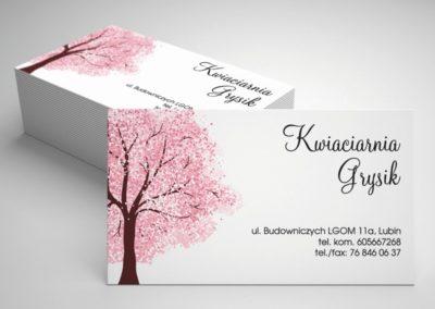 drukarnia-wizytowek-lubin-polkowice-chojnow-chocianow-scinawa-jawor-legnica-glogow-nowasol